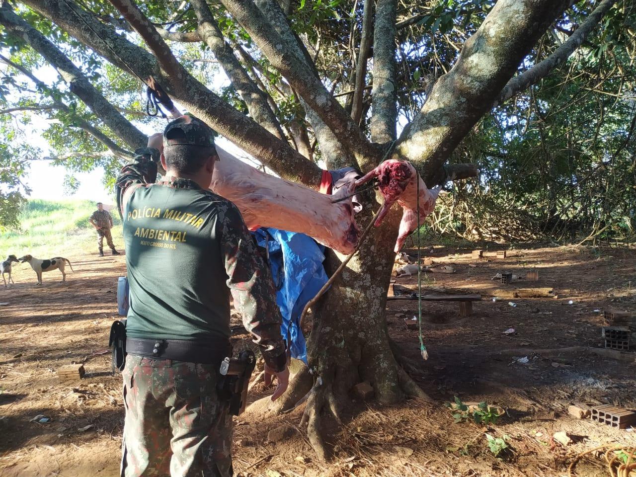 Polícia Militar Ambiental prende cinco caçadores em Nova Alvorada do Sul